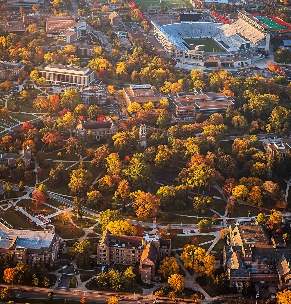 Michigan State University campus with trees.