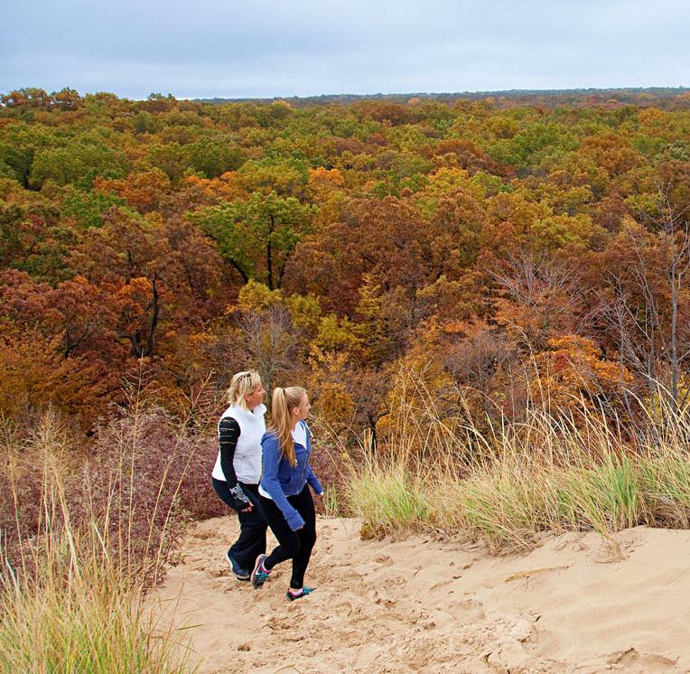 Indiana Dunes National Park Fall Foliage