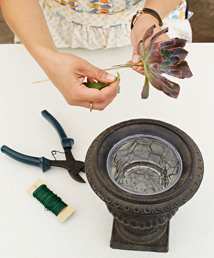 Preparing the vase and wiring a succulent