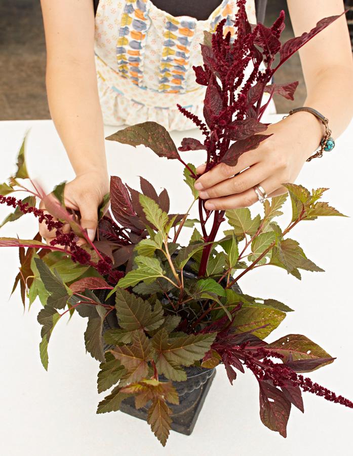 Place the foliage