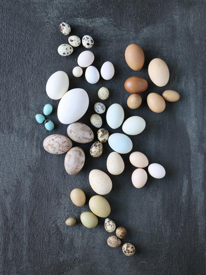 Egg variations