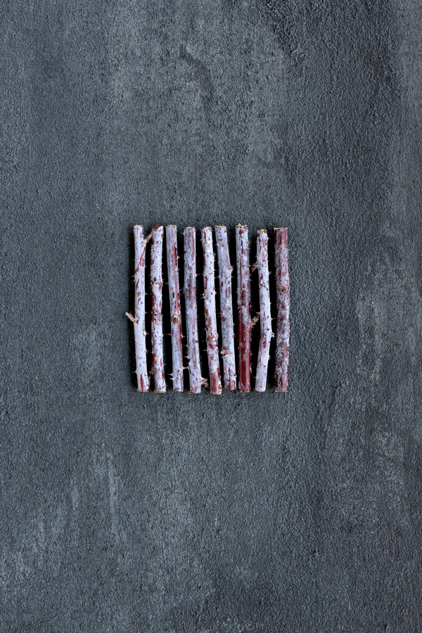 Raspberry cane rows