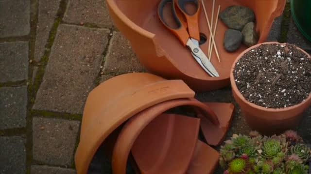 How To: Create a Cracked-Pot Garden