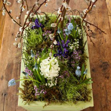 DIY tabletop garden