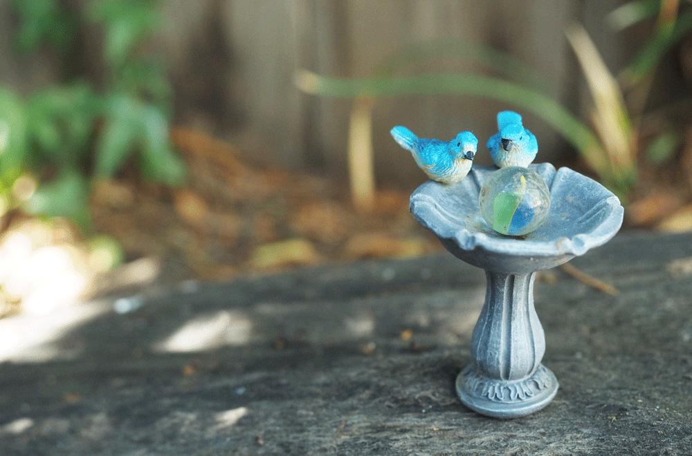 Fairy garden birdhouse