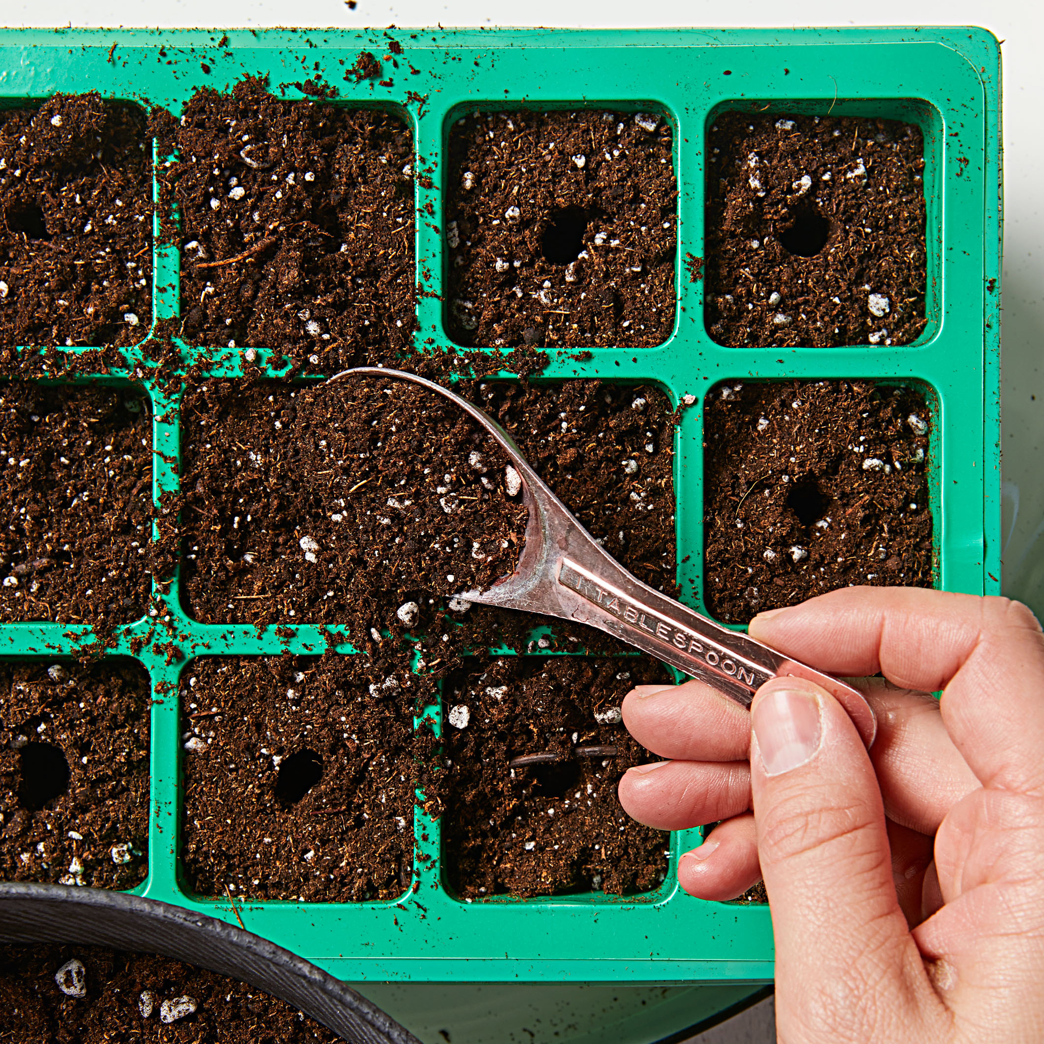 How to start seeds-Step 4