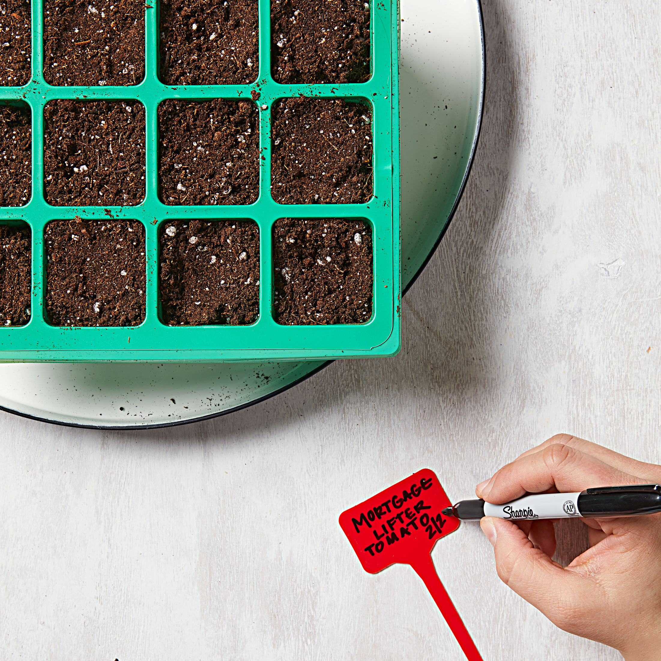 How to start seeds-Step 5