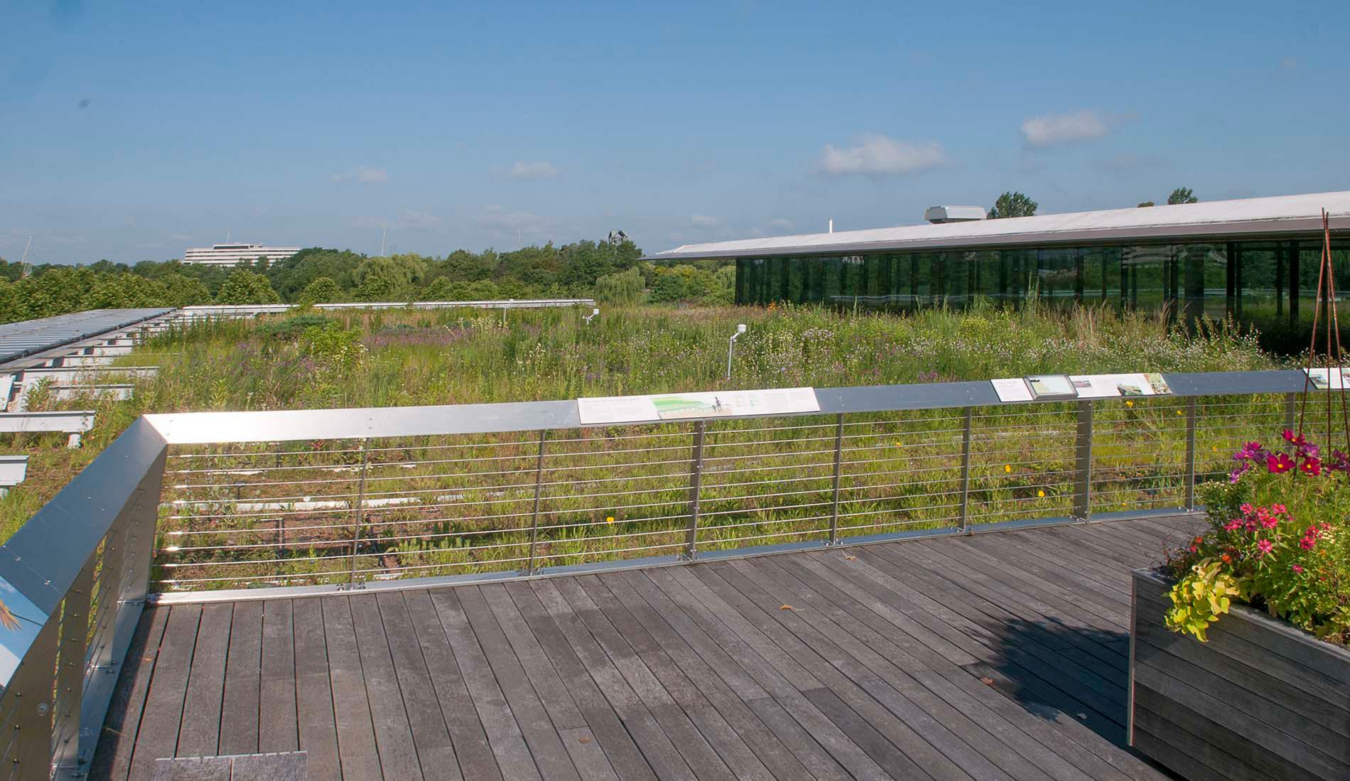 Chicago Botanic Garden green roof-South