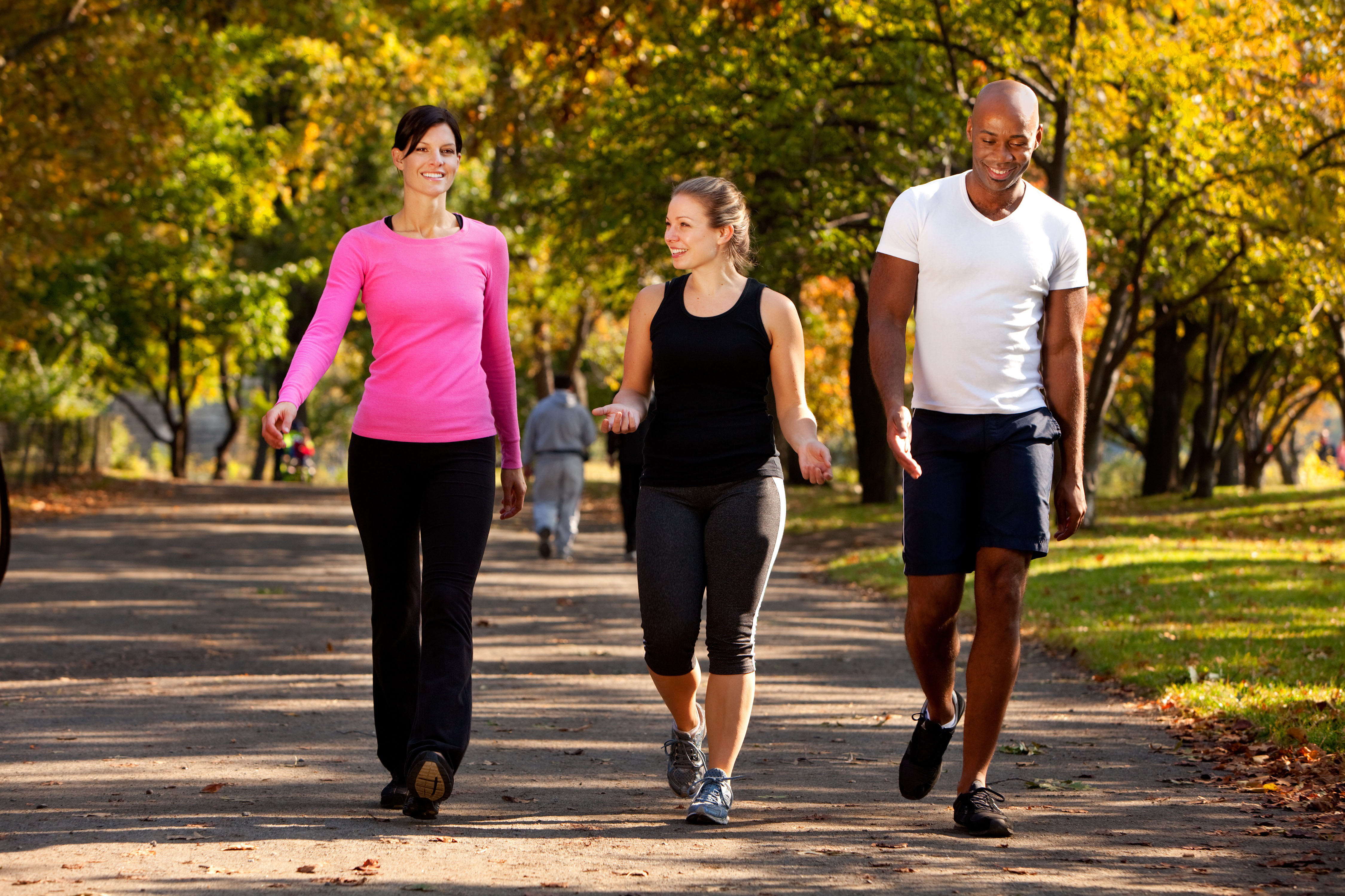 Beginner's Walking Plan