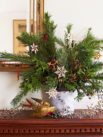 Sprucing Up: Nature-Inspired Holiday Decor