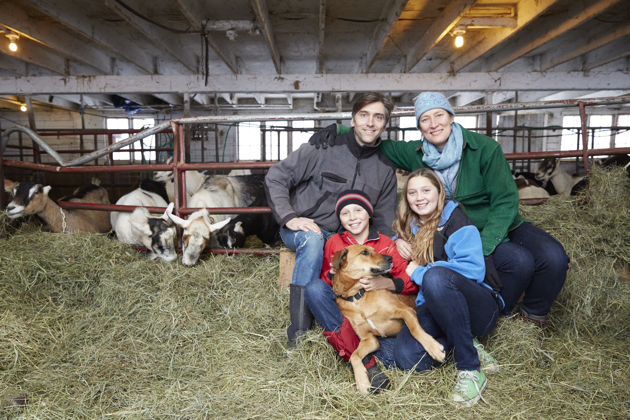 Modern Life: Working and Living on a Dairy Farm