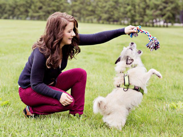 adopt pets event.jpg