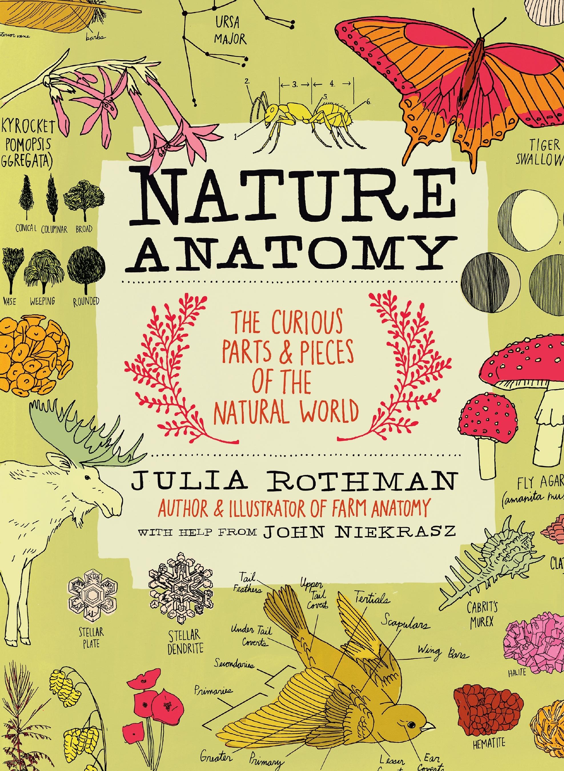 NatureAnatomy.jpeg