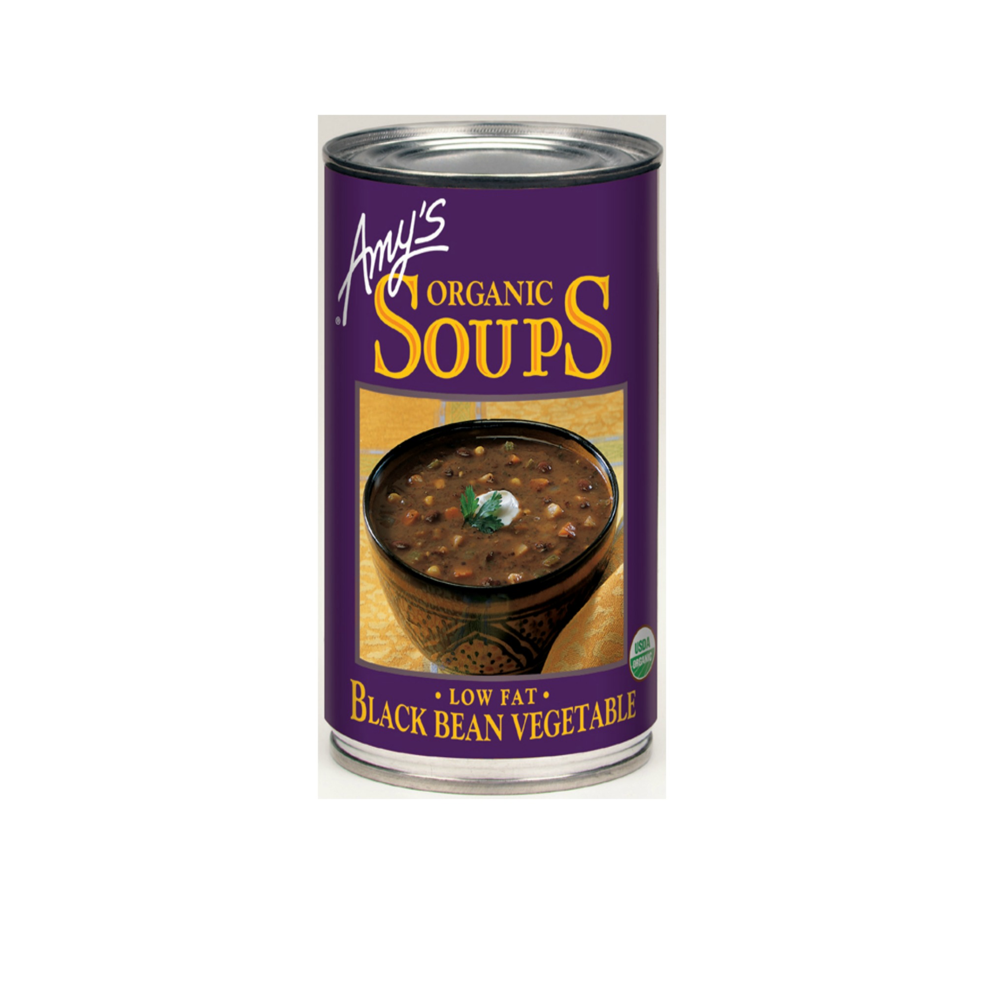 Amy's Soup Web.jpg