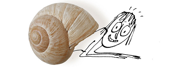 cr snail.jpg