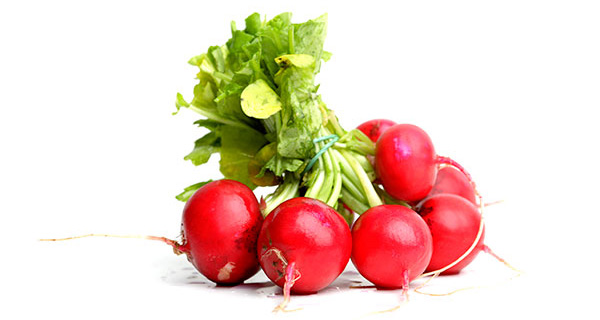 cr radishes.jpg