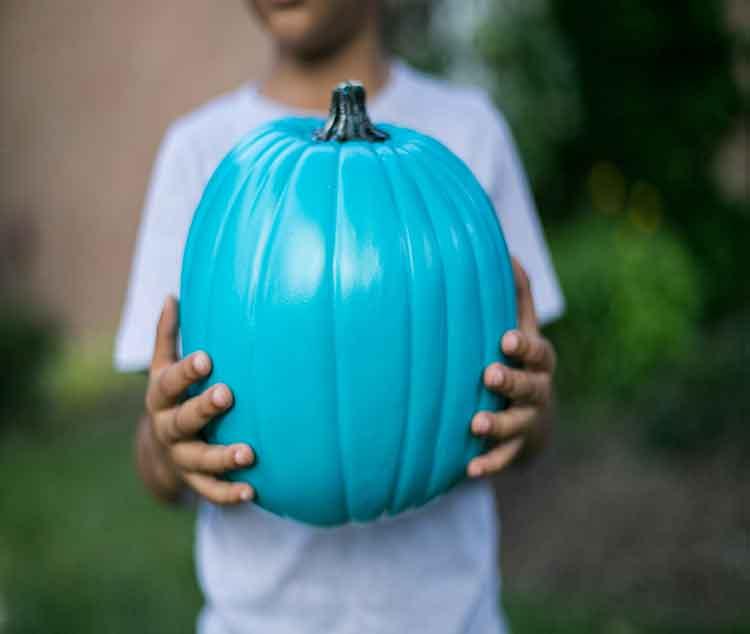tealpumpkin2.jpg