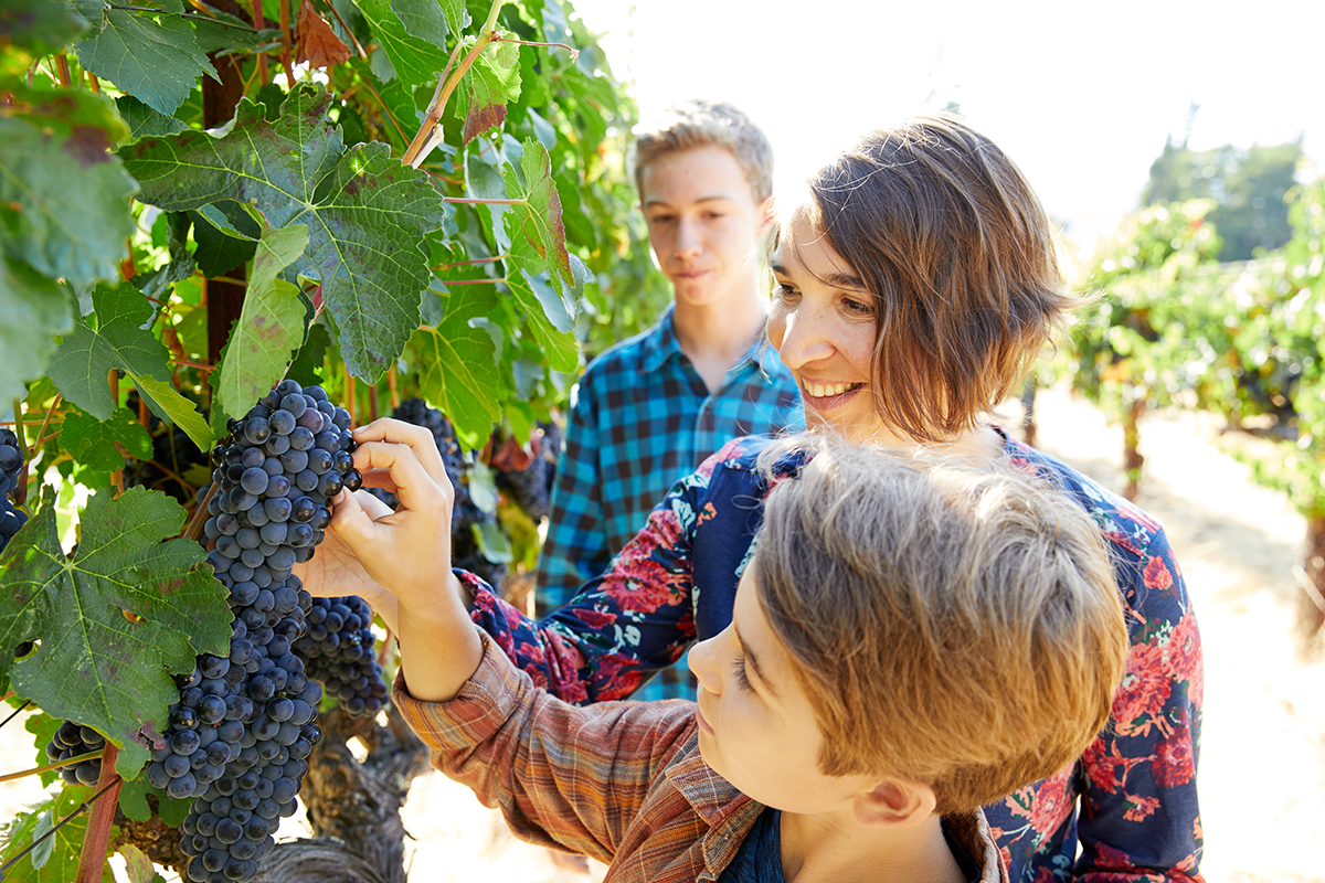 MLife Jan 2018 Foster Family Family With Grapes