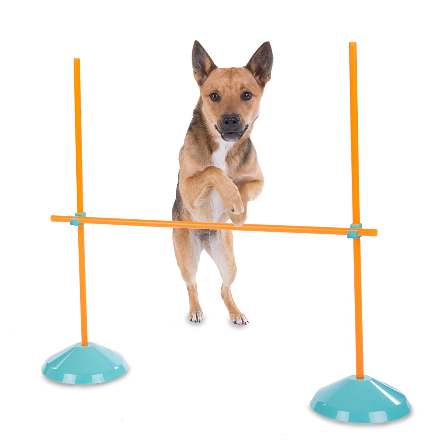 Outward Hound Zip & Zoom Indoor Agility Kit for Dogs