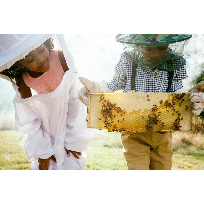 Children making honey