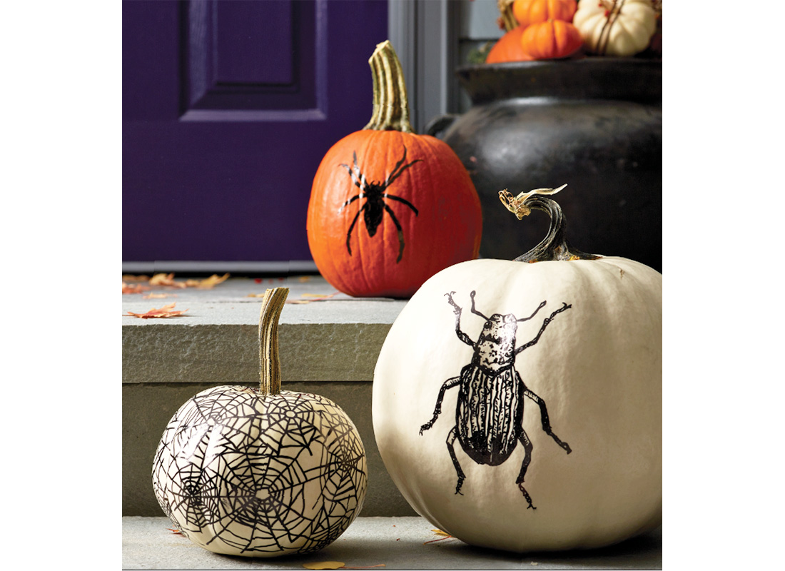 How to Create Easy Spider, Beetle & Spiderweb Pumpkin Designs