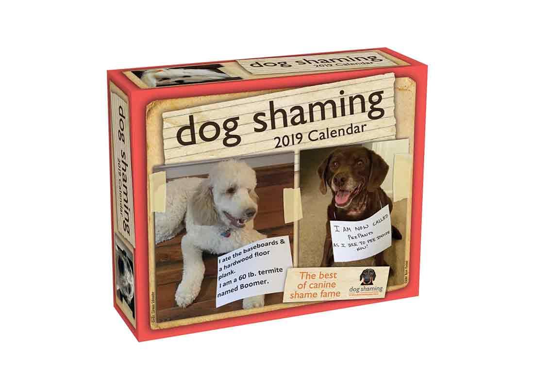 2019 Dog Shaming Calendar