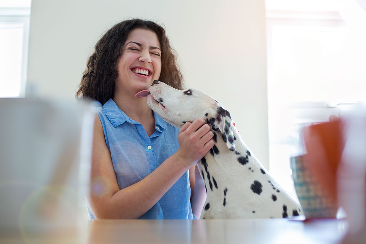 teen girl getting kisses from Dalmatian