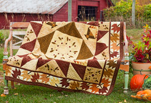 Color Options from American Patchwork & Quilting October 2012