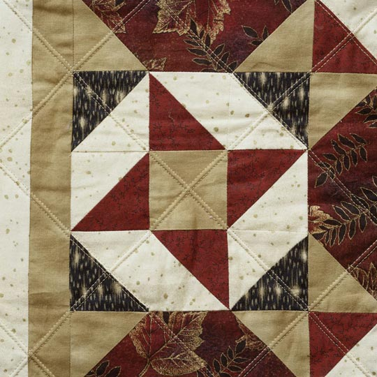 Machine Quilting--Double Needle