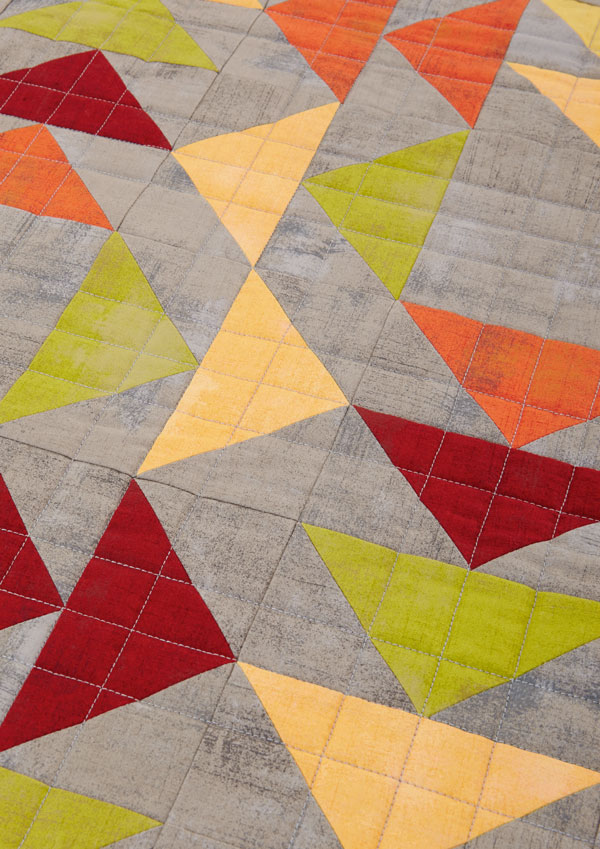 Every Which Way Machine-Quilting Detail