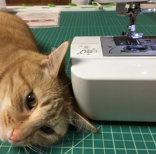 """Cats Who """"Sew"""""""