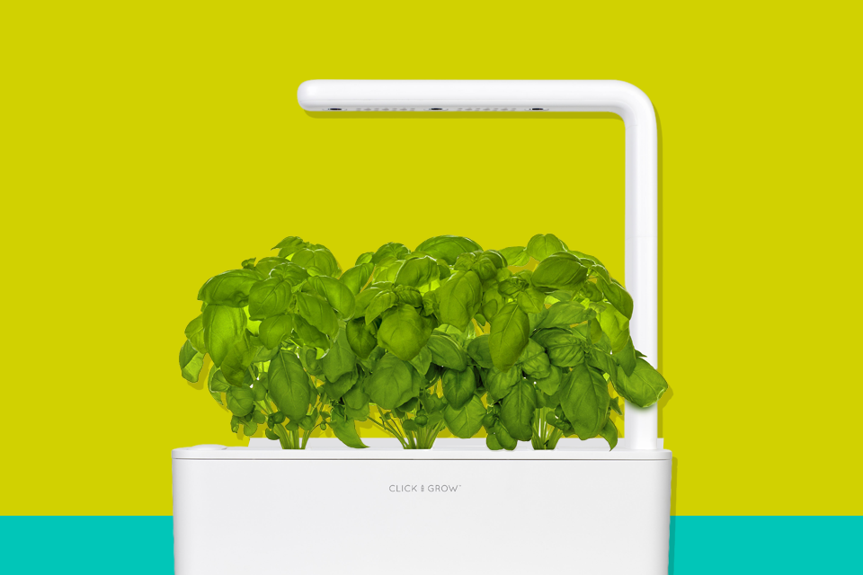 the 9 best indoor herb growing kits for 2021