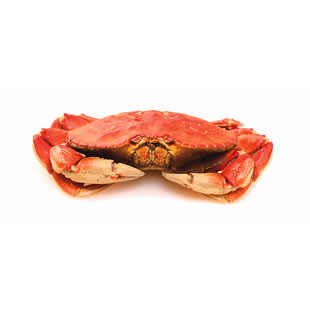 How to Prepare a Whole Dungeness Crab | EatingWell