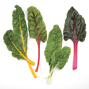 Spinach & Chard