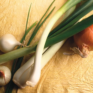Tips for Storing Onions