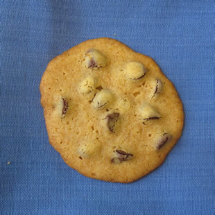 Cane Syrup Chocolate Chip Cookie