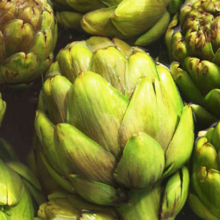 artichokes-1_cropped_for_web.jpg