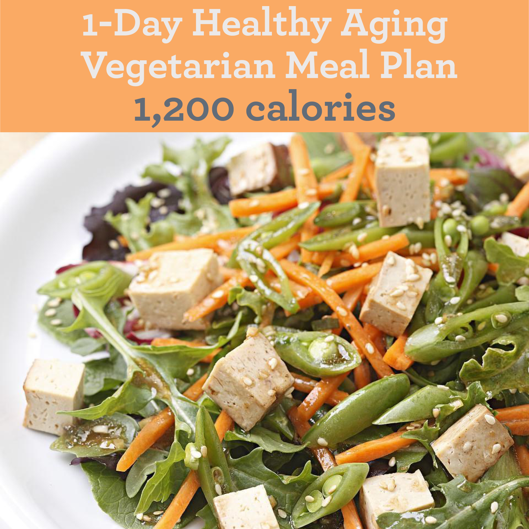 1-Day Healthy Aging Vegetarian Meal Plan 1,200 Calories