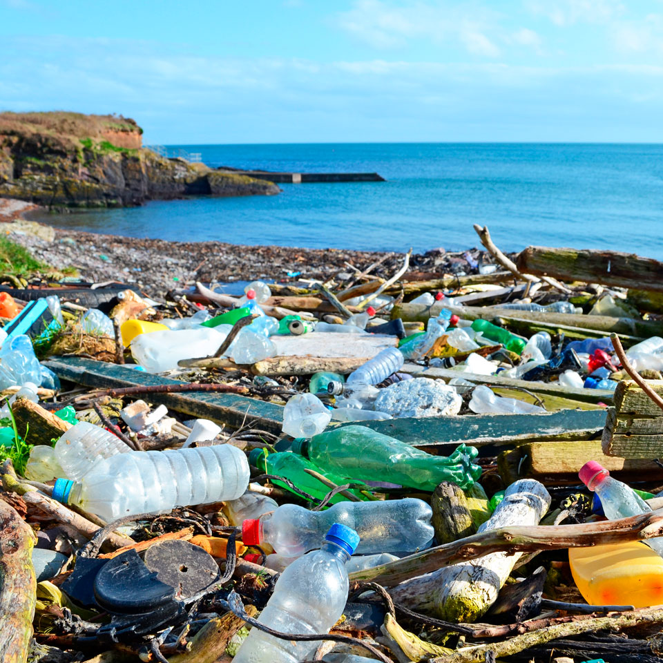 The Effect of Plastics on Your Health and the Environment