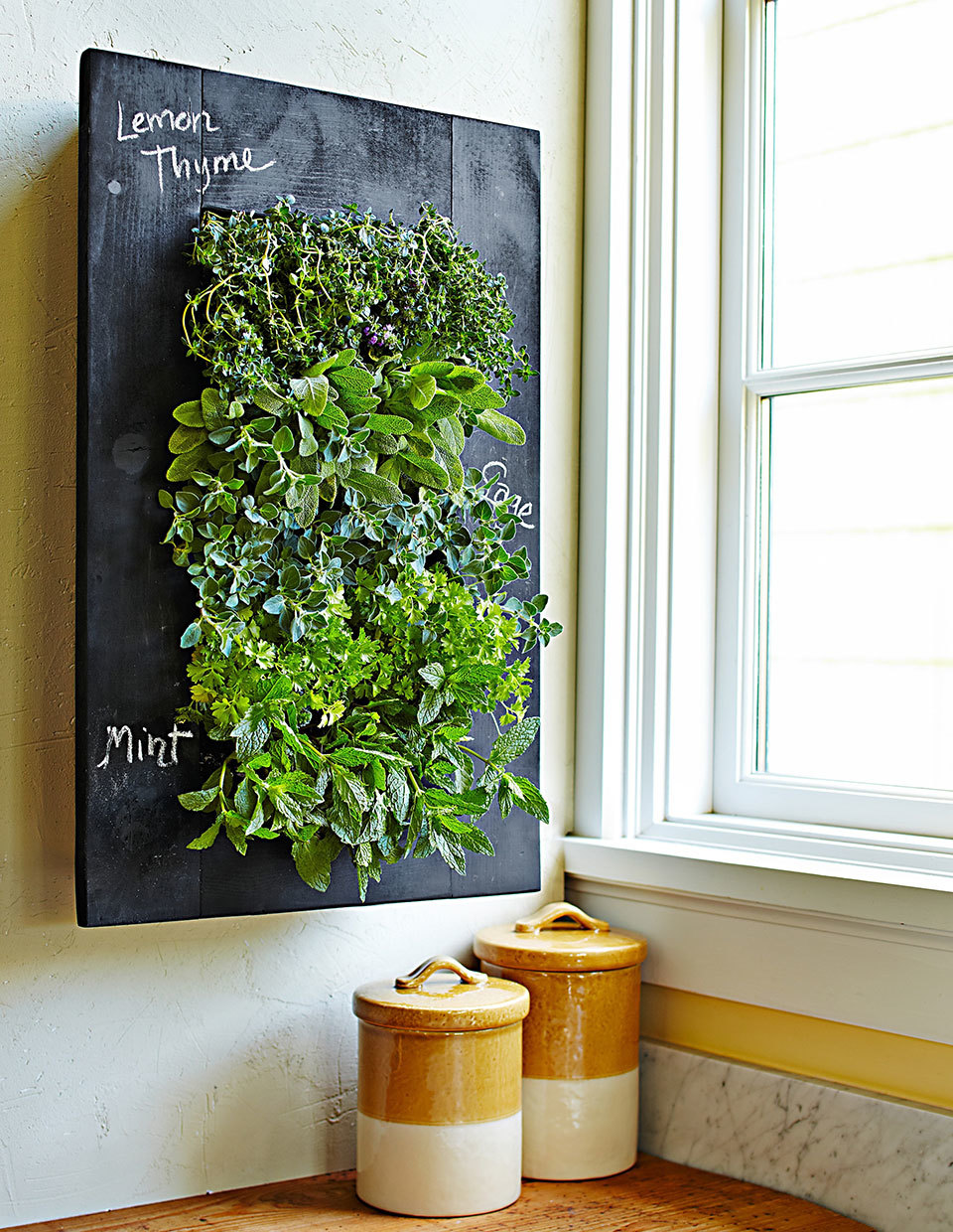 Your Ultimate Guide To Growing Herbs Indoors Eatingwell