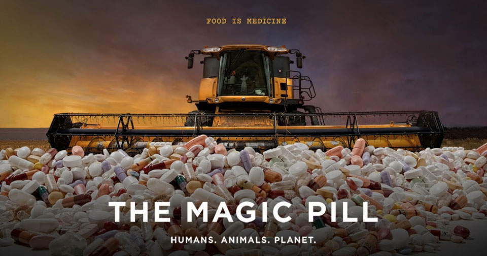 """""""The Magic Pill"""" Documentary Claims the Ketogenic Diet Can Heal Basically Everything"""