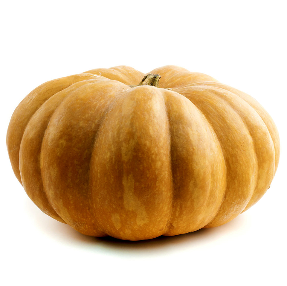 adobestock_31179591-long-island-cheese-pumpkin.jpg