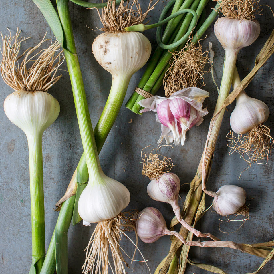 4 Tips for How to Cook With Garlic