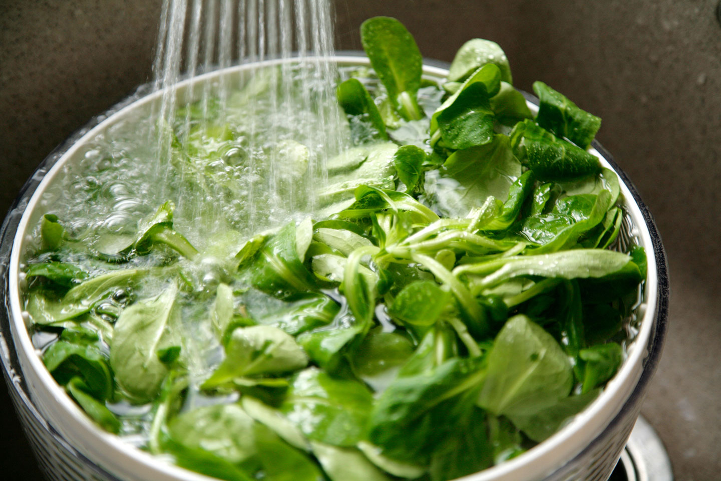 lettuce in a bowl of ice water