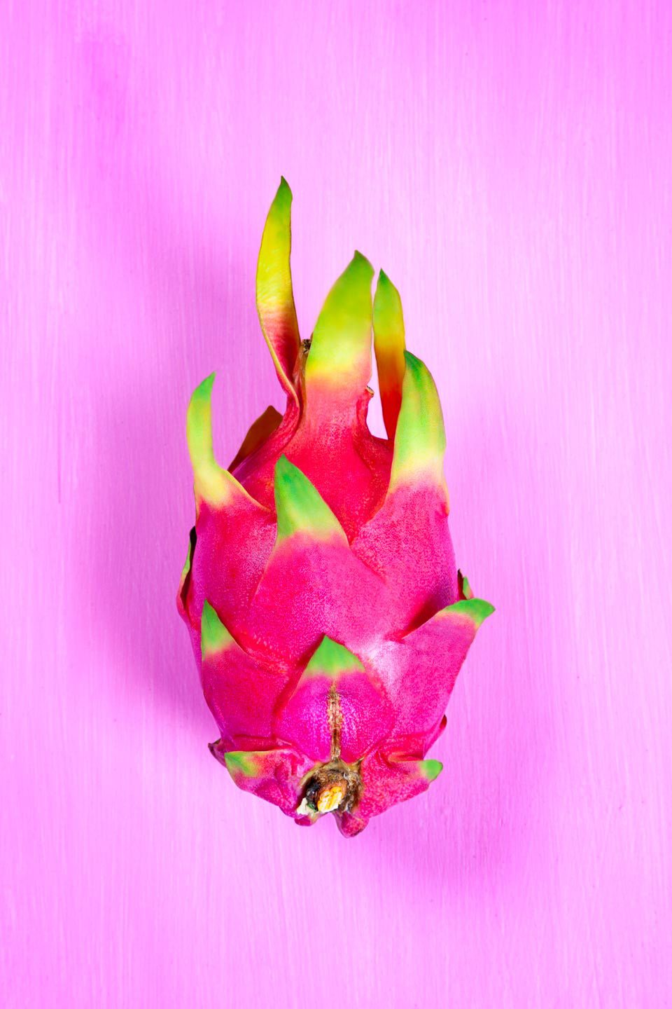 dragon fruit pink backdrop