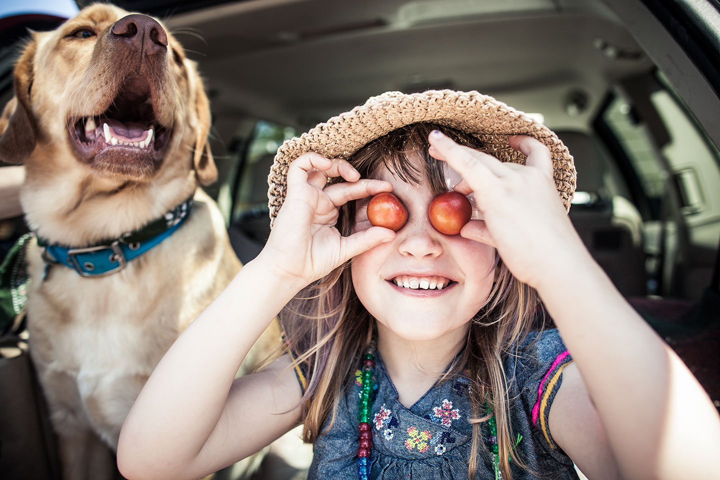 8 Great Ideas for Packing Healthy Road-Trip Snacks Kids Will Love