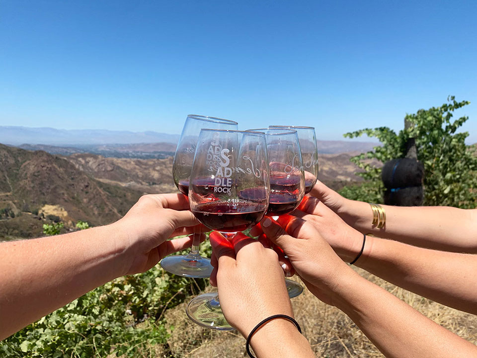 several hands holding wine glasses and clinking wine glasses together