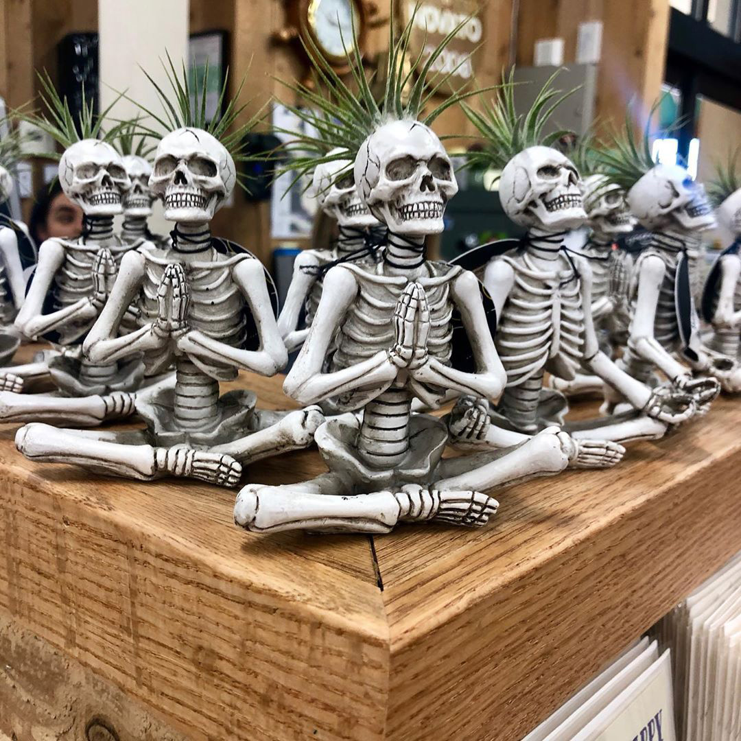 These Yoga Skeleton Planters From Trader Joe's Are Making Halloween Way Cuter