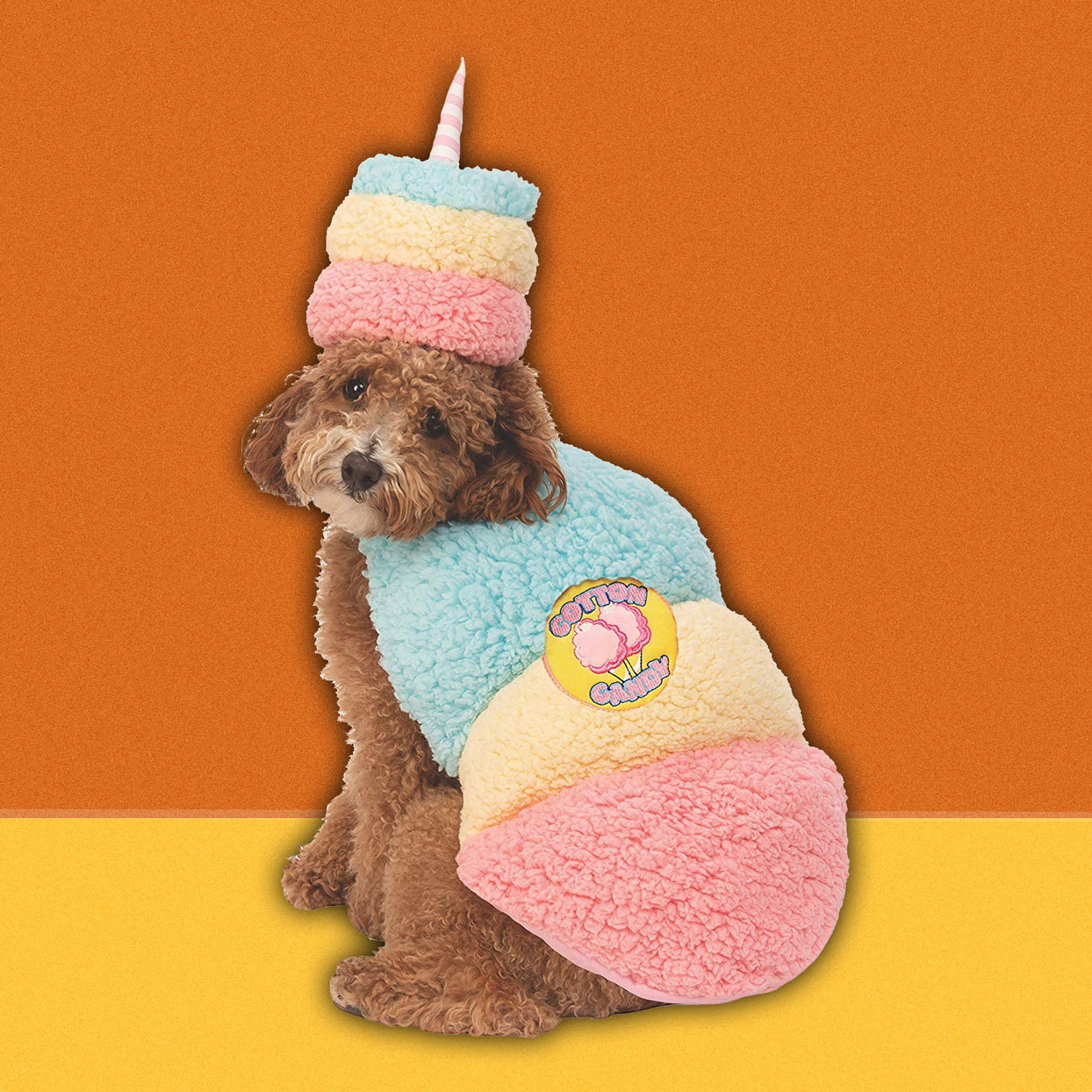 dog wearing cotton candy costume
