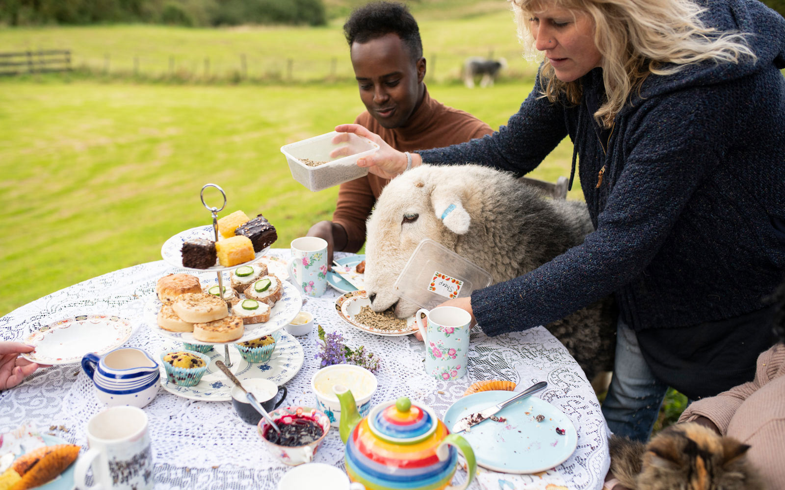 people sitting at a table having tea and cakes with sheep